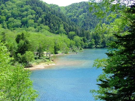 「秋得」源泉掛け流しのにごり湯温泉と志賀高原ハイキングプラン