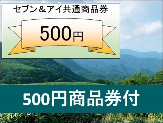 【期間限定】お財布が喜ぶ500円商品券付きプラン【食事なし】〜