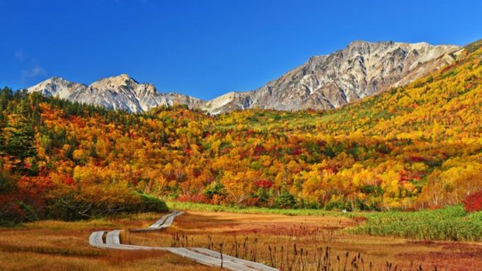 【紅葉のグルメ旅】彩り豊かな白馬へ、秋の味覚と紅葉を楽しむオーベルジュの旅《平日限定1000円割引》