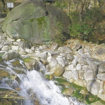 【大石公園】日本一大きいと言われている御影石がございます