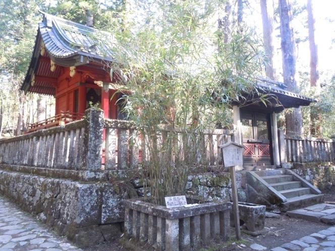縁結びの笹(滝尾神社)