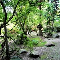 庭園 〈初夏〉