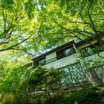 広葉樹林に囲まれ、自然豊かな立地です。