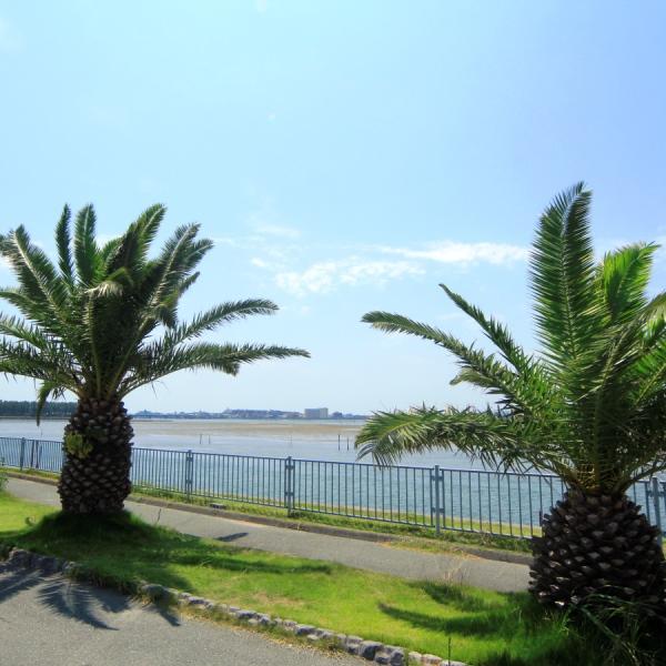 浜名湖周辺は見所満載!