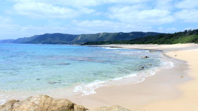◆ 亀シュノーケリングツアー ◆奇跡の島☆奄美の海へ冒険にでかけませんか?ウミガメと一緒に泳ごう!