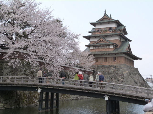 【春】4月中旬 高島城の桜が見頃です