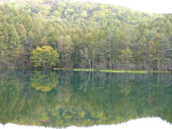 【秋】10月中旬 御射鹿池です