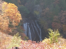 【秋】10月下旬 横谷渓谷の王滝を横谷観音の所から見ました