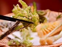 揚げたてサックサク「山菜天ぷら」