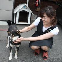 いつも仲良しな女将さんと愛犬ココア。