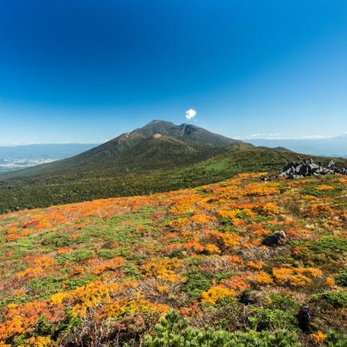秋の三石・岩手山