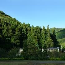 *当館周辺の風景/山々に囲まれ緑がいっぱい♪
