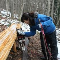 敷地内冬の登山道。一年を通して登山が楽しめます。女将さんと愛犬ココア