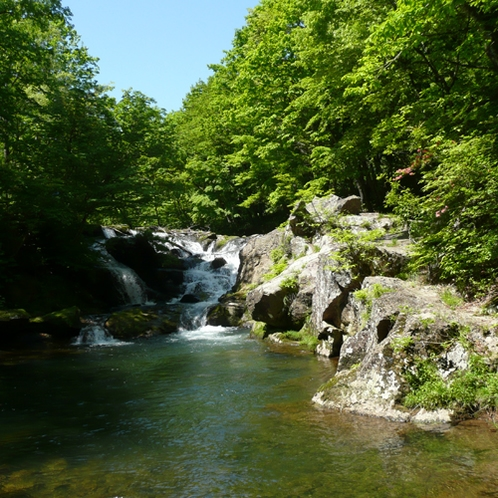 鶯宿 夏の逢滝