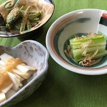 豊富な山菜