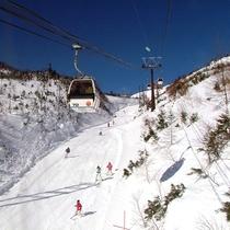 *草津国際スキー場/初級~上級まで幅広いゲレンデ、コースがございます