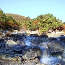 *西の川原公園/秋は紅葉、夏は新緑…それぞれの四季の美しいシーズンを、露天風呂に浸かりながら…