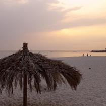 (周辺観光)白良浜と椰子の葉パラソル/夕暮れ
