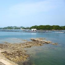 (周辺観光)田辺湾