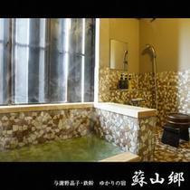 【特別室内湯】完成したばかりの特別室内湯
