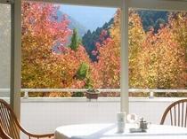レストランからの風景 秋