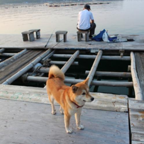 桟橋の釣り人とマドレーヌ