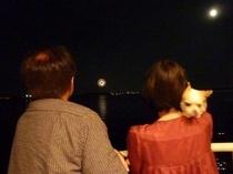 舘山寺の花火がどこからでも見れます。2010.7.25