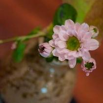 館内を彩る花々