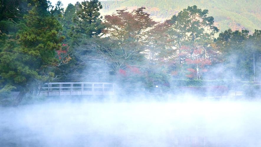 ・朝霧が舞う金鱗湖