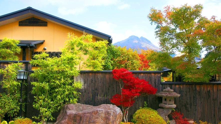 ・建物越しに由布岳をご覧いただけます