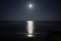 今井浜 月明り