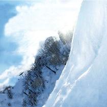 良質のパウダースノーと山頂から望む日本海の景色には感動!
