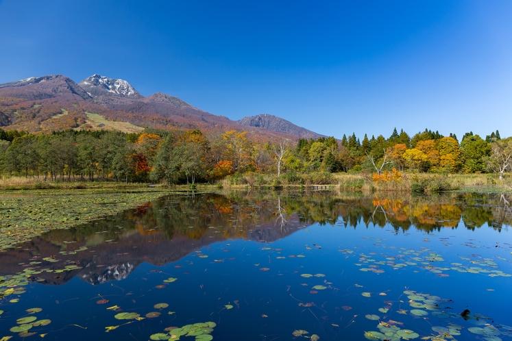 妙高高原(いもり池)