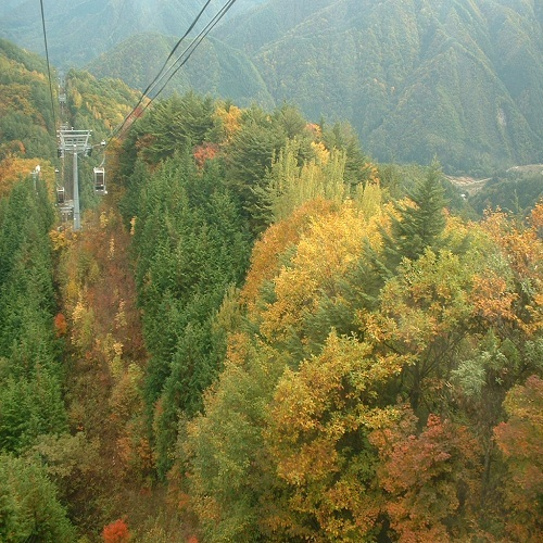 紅葉とロープウェイ