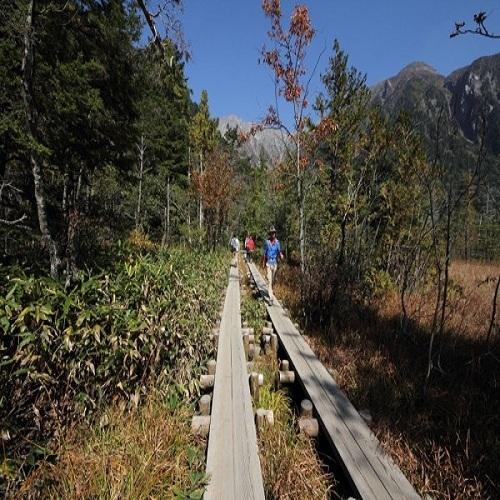 秋の上高地登山道