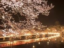 【高田公園】・夜桜と西堀橋
