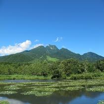 【夏の妙高山】 いもり池にて