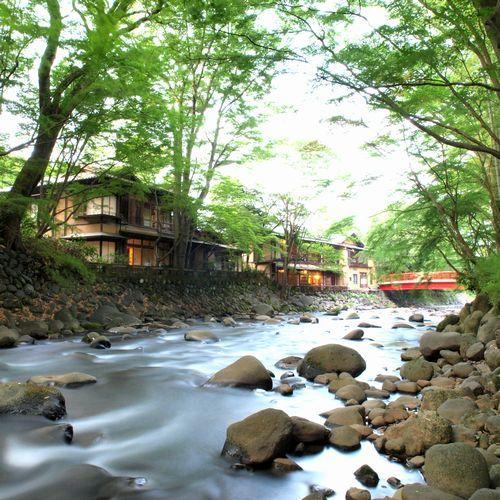 【川沿いの建築】小鳥のさえずりや桂川のせせらぐ音など、自然を間近に感じていただける立地です。