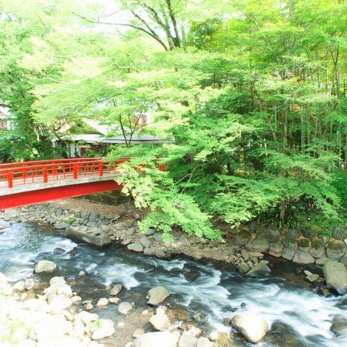 【花の棟からの景色】対岸には竹林の小径がご覧頂けます。