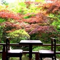 【テラス】中庭の風景をゆっくりとお楽しみいただける、常連様に人気のスポット。
