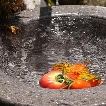 【露天風呂】脇に用意してある、キンキンに冷えたトマトはなんと食べ放題!長風呂のおともにどうぞ♪