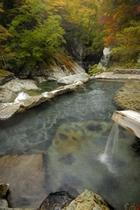 野天風呂・仙郷の湯。