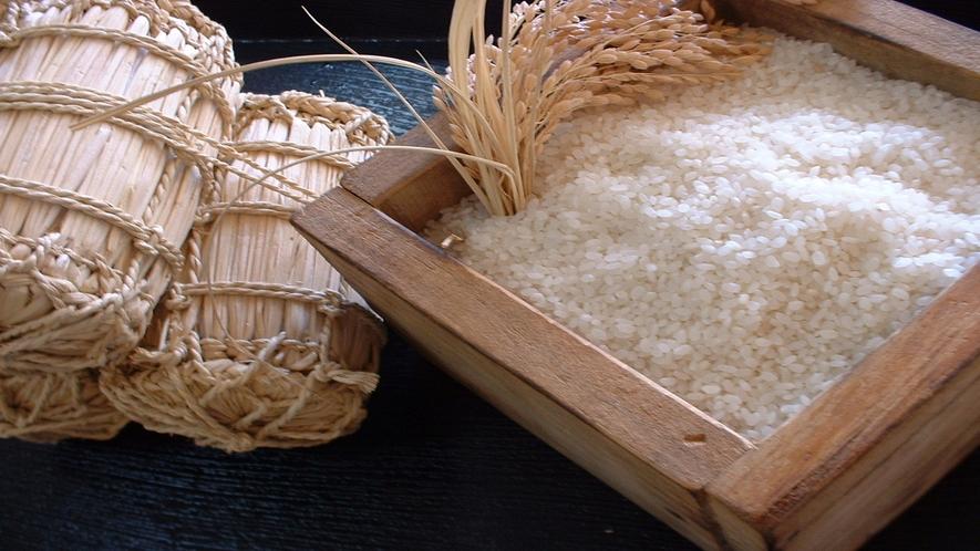 南魚沼樺野沢産コシヒカリ