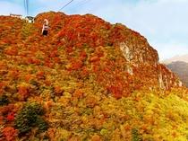 雲仙仁田峠の紅葉