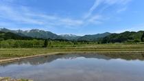 田植え時期の美しい風景
