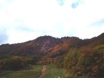 秋の蔵王6