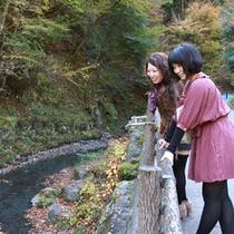 10:00「せせらぎの音はここから聞こえるんだ」大松閣の目の前には小川が流れ、飛沫をあげる滝が…