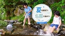 エントランスを出てすぐ、心地よくせせらぐ小川が流れており、涼しげな水しぶきをあげる滝がございます
