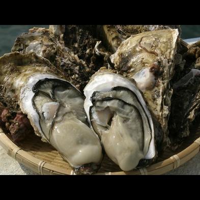【夏の膳〜岩牡蠣〜】10,000円ポッキリ☆《匠の膳〜takumi〜》×《生牡蠣》で越後の旬を食らう