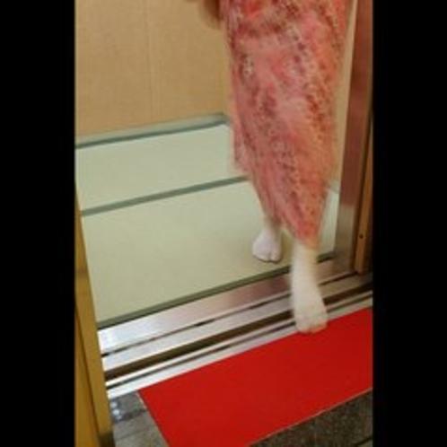エレベーターの中まで畳敷き